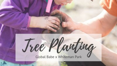 Whiteman Park and Global Babe plants 2000 trees at The Children's Forrest